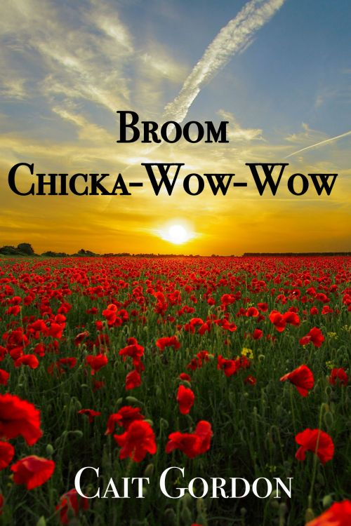 Broom-Chicka-Cover