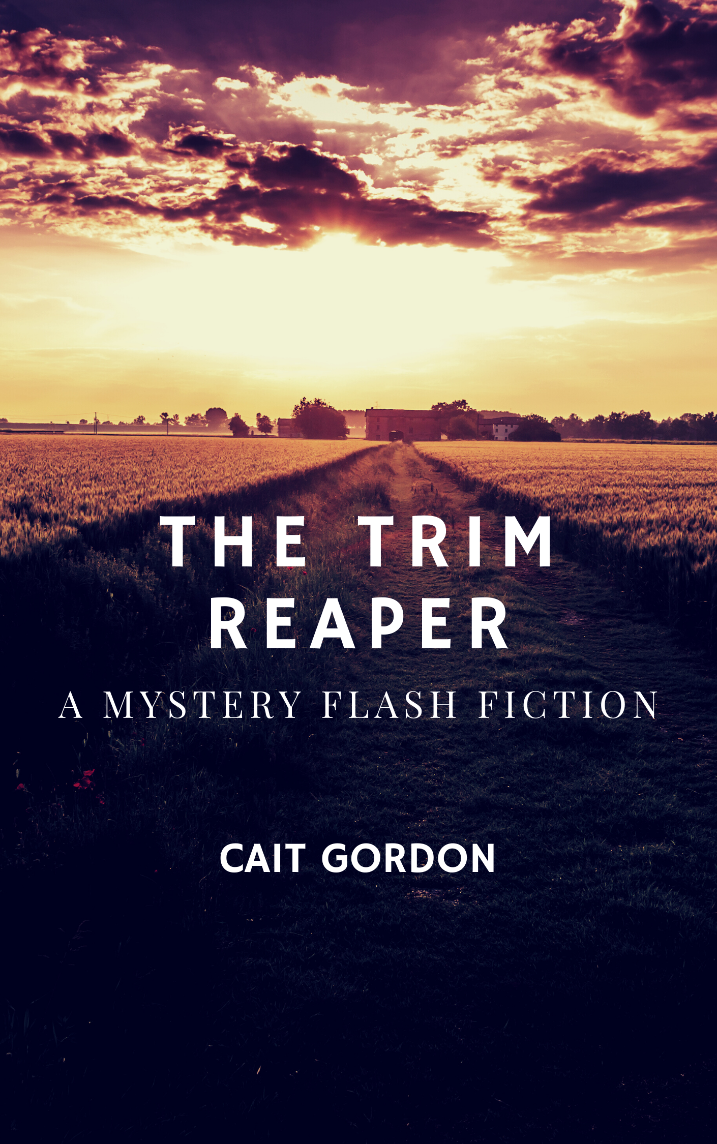 ID: A sunset on an open field, all dark browns, ambers, and ochres. Text reads: The Trim Reaper, A Mystery Flash Fiction, Cait Gordon