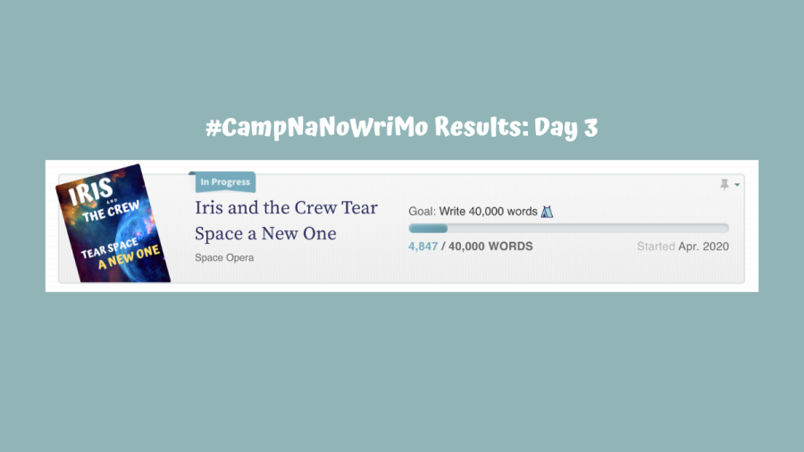 CampNaNoWriMo Dashboard Results, Day 3: 4,847/40,000 words