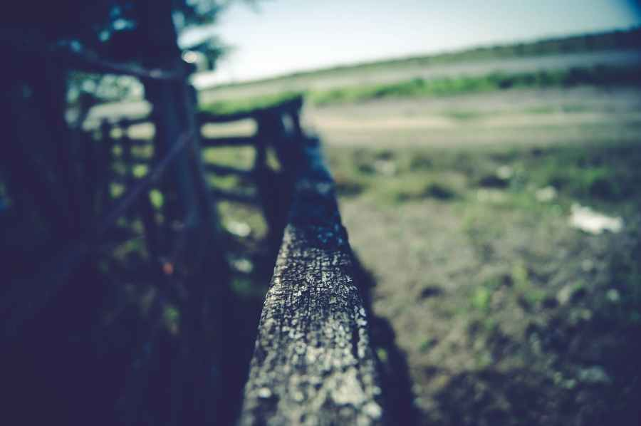 ID: A field and a corral-like dark wooden fence